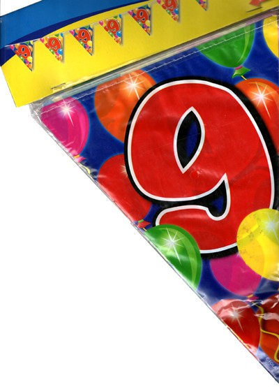 Birthday Flag Banner 9 Years Old