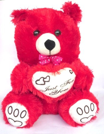 Just For You Teddy (Red)
