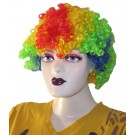 Multi Colored Frizzy Afro Wig