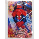 Spiderman Party Loot Bags (Pack Of 10)