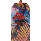 Spiderman Invitation Cards - Pack of 10