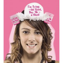 Bachelorette Party Veil (Pink)