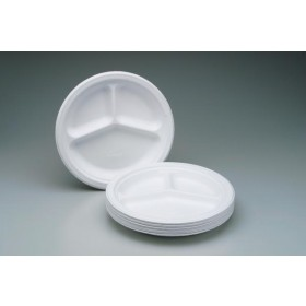Disposable White Pulp Paper Plate (Pack Of 10)
