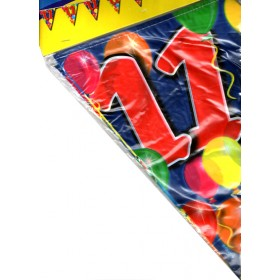 Birthday Flag Banner 11 Years Old